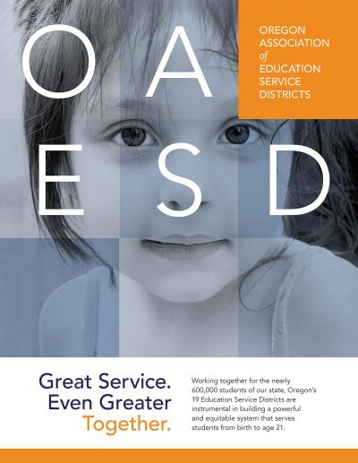 OAESD Executive Summary